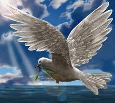 A Pasquetta vola con noi!!!